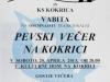 Plakat - povabilo na koncert